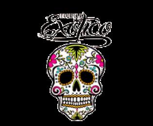 exotico-sm